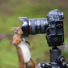 The art of selfies..