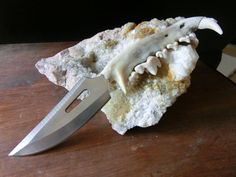 Coyote Jaw bone, Stainless Steel Hunting Knife, Hand Tooled Sheath. $55.00, via Etsy.