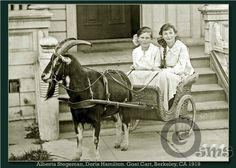 1920s step ins - Google Search