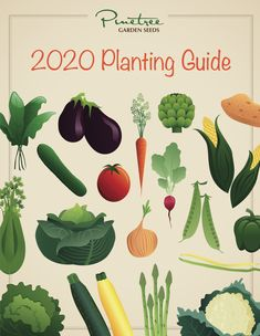 Whether this is your first time planting a home garden or you are an experienced gardener taking a fresh approach to a long-established plot, a good garden plan sets you up for a great harvest. Veg Garden, Garden Seeds, Fruit Garden, Lawn And Garden, Simple Greenhouse, Garden Planner, Growing Vegetables, Amazing Gardens, Gardening Tips