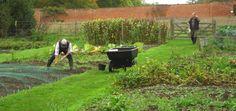 Le beau temps est de retour, le jardinage aussi ! Profitez du soleil pour entretenir vos jardins et préparer le sol de votre potager. Équipez-vous grâce à Le-Deal !