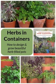 Herbs make great plants for containers. Complete Container Herb Gardening by Sue Goetz offers all the instruction you'll need to grow healthy herbs in pots. #herbs #gardening Organic Gardening, Gardening Tips, Vegetable Gardening, Container Plants, Container Gardening, Garden Projects, Garden Ideas, Healthy Herbs, Growing Seeds