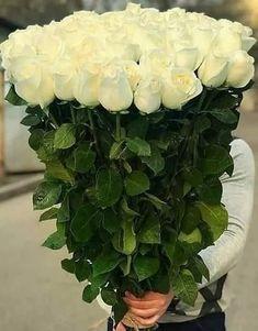 Urare Beautiful Flowers Images, Beautiful Flowers Wallpapers, Beautiful Flowers Garden, Amazing Flowers, Beautiful Roses, Pretty Flowers, Orchid Flower Arrangements, Beautiful Flower Arrangements, Sweet Boys