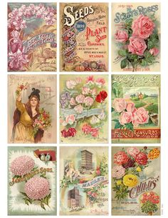 Vintage Seeds Art Free Print | 2013, Jodie Lee Designs. Personal use and small runs of up to 50 ...