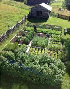 Edible garden 559642691175548560 - Above: Photograph via Bukowskis. A three-hours' drive north from Stockholm, a farm dating to the has a sprawling kitchen garden. Edible garden Gardenista Source by contedullc
