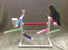 Parrots Wooden Perch Stand Playstand With Parrots Water Food Bowls For Birds Parrot Stand, Bird Stand, Parrot Perch, Bird Perch, Pineapple Conure, Bird Play Gym, Homemade Bird Toys, Homemade Baby, Cockatiel Cage