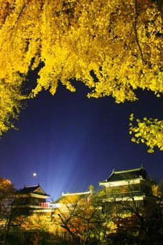 Ueda Castle illuminated at night, Ueda, Nagano Prefecture, Japan