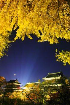 Ueda Castle illuminated at night, Ueda, Nagano Prefecture, Japan