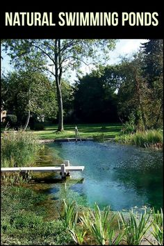 Take a look at these breath-taking natural swimming ponds. Don't they make you wish you have your own, too?