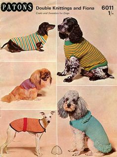 PDF of a Knitting Pattern for Five Assorted Dog Coats and Jackets