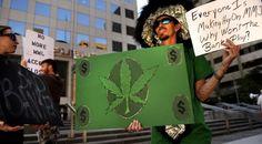 marijuana money hbtv hemp beach tv