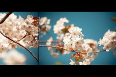 by Alkman, via Flickr