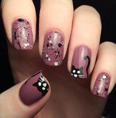 maroon with black and white cats