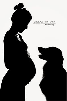 maternity silhouette with dog pose, maternity animal posing, maternity photo session with puppy