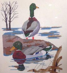 "Mallard Duck Pair Cross Stitch Aida Completed Framed 17x21""   eBay"