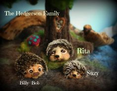 Miniature hedghogs