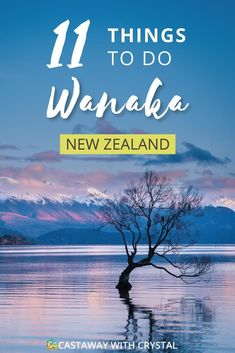 In case you needed a reason to visit Wanaka in New Zealand, these are it! A list of the 11 most spectacular and FREE things to do in Wanaka, NZ. Beautiful lakes, incredible hiking and pristine swimming holes, Wanaka has it all! New Zealand Itinerary, New Zealand Travel Guide, Auckland, Cool Places To Visit, Places To Go, Wanaka New Zealand, Queenstown New Zealand, Lake Wanaka, Travel Advice
