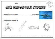 DianaEducació: vivències i recursos: Projecte dofins (2ona. part)