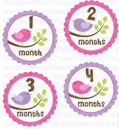 Baby Birdie Monthly Onesie Stickers  Ashley  Purple by MaddiesMomE, $8.99