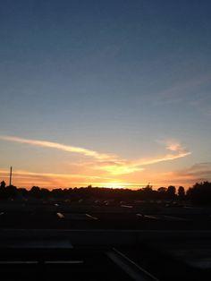 Sunset looking like a Golden bird..