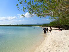 One of the most beautiful beaches in #Galapagos, #PlayaMansa in #TortugaBay #Ecuador
