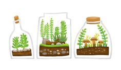 Terrariums illustration printed at Stretched Canvas. Visit the shop at Society6!