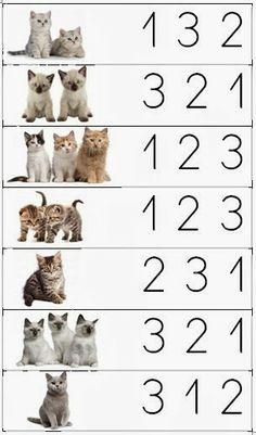 Sempre criança: 1, 2, 3 MIAU