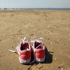 Vans off the walls #beach #plage #vacances #holidays #orange #netherlands #PaysBas #piedsDansLEau