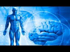 Применение метода биолокации в психосоматике.