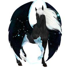 Pegasus Marwari Black Overo