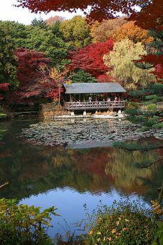 Higashiyama Botanical Garden, Nagoya, Japan 東山植物園
