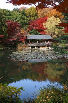 Nagoya Japan.  These houses are built on the water outside palaces because they held all the important documents of the prefecture.  It protected them from fire.  All palaces have them.