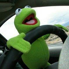 Kermit the frog Kermit The Frog Meme, Funny Kermit Memes, Emoji Wallpaper, Wallpaper Iphone Cute, Sapo Kermit, Sapo Meme, Ichigo E Rukia, Muppet Babies, Cute Love Memes