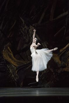 Natalia Osipova in Giselle copyright: Bill Cooper 2014