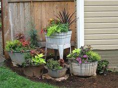 Wash basin gardening