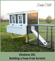 Our DIY chicken coop, complete with nest boxes and a run. Step by step photos.