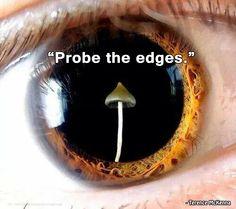 the edges
