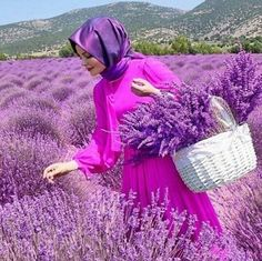 Lavender Blue, Lavender Fields, Lavender Flowers, Purple Flowers, French Lavender, Beautiful Hijab, Beautiful Flowers, All Things Purple, Mode Hijab
