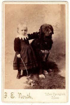 Retriever like Newfoundland or St. John's Water Dog & Girl & Toy Dog? 1890 in Collectibles, Photographic Images, Vintage & Antique (Pre-1940), Cabinet Photos | eBay