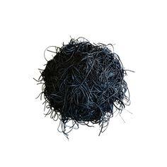 Black Hole Has Hair