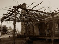 Grape Arbor by oldsouthvideo, via Flickr