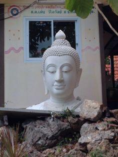 Budha is everywhere...