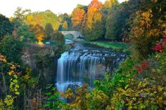 Webster Falls in Dundas is the largest in the region - and one of the most popular. Ontario Travel, Tourism Website, Quebec City, Niagara Falls, Hamilton, Waterfall, Canada, Park, Quebec