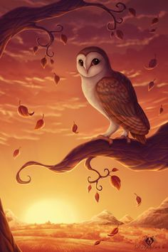Owl art by ©DolphyDolphiana Owl Artwork, Owl Wallpaper, Owl Illustration, Owl Pictures, Beautiful Owl, Art Plastique, Spirit Animal, Fantasy Art, Art Projects