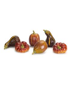 Pumpkin & Gourd Decorations - Set of Six #zulily #zulilyfinds