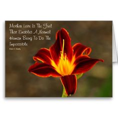 Beautiful Mother's Day Card Click Here