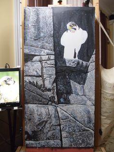 Canadian Wildlife Artist featuring original works of art and prints Original Artwork, Original Paintings, Canadian Wildlife, Wildlife Art, Cliff, Art For Sale, Hanger, Gallery, Artist