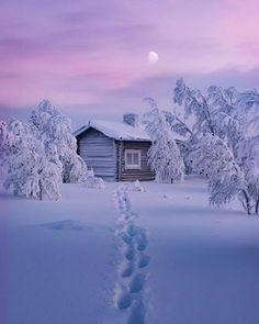 Find images and videos about winter, snow and landscape on We Heart It - the app to get lost in what you love. Winter Szenen, Winter Cabin, Winter Time, Winter Christmas, Snow Cabin, Winter Photography, Nature Photography, Snow Scenes, Winter Beauty