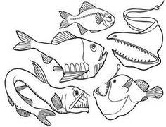 Deep Sea Fish Angler Fish Coloring Pages: Dangerous Deep Sea Fish ...