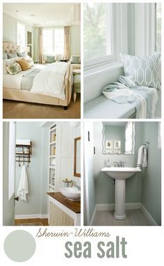 Sherwin Williams Sea Salt - the most perfect blue-gray neutral paint color! Sea Salt looks green in our lighting. Neutral Paint Colors, Interior Paint Colors, Wall Colors, House Colors, Interior Design, Gray Paint, Neutral Bathroom Colors, Best Bathroom Paint Colors, Coastal Paint Colors
